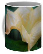 Petal Pillows By Jrr Coffee Mug