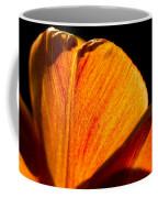 Petals And Sun Coffee Mug