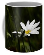 Petals Of White Coffee Mug