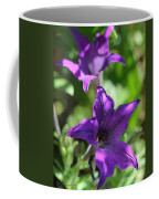 Petunia Hybrid From The Sparklers Mix Coffee Mug