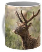 Pfffft Coffee Mug
