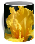 Phaeton Finery Coffee Mug