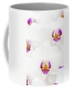 Phalaenopsis Coffee Mug