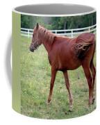 Philly Coffee Mug