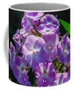 Phlox 7128 Coffee Mug