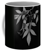 Phoenix Fall 05 Coffee Mug