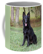 Phoenix II Coffee Mug