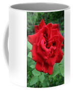 Photograph Reddest Of Roses Coffee Mug