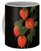 Physalis Coffee Mug