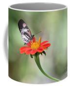 Piano Wings Butterfly Coffee Mug