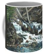 Picnic At The Falls Coffee Mug