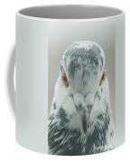 Pigeon Portrait En Face Coffee Mug
