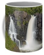 Pigeon River High Falls 10 Coffee Mug