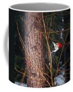 Pileated Woodpecker Coffee Mug