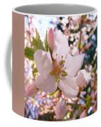 Pin Cherry Blooms Coffee Mug