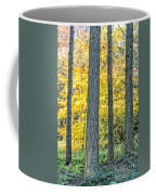 Pine Forest In The Autumn Coffee Mug