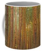 Pine Forest Lienewitz Germany Coffee Mug