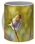 Pine Siskin - Digital Paint Coffee Mug