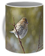 Pine Siskin Coffee Mug