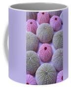 Pink And Green Urchins Coffee Mug
