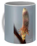 Pink And Grey Pussy Willow In Bloom Coffee Mug