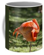 Pink And Orange Ball Coffee Mug