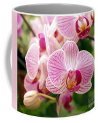 Pink And Purple Butterfly Orchids Coffee Mug