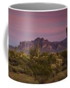 Pink And Purple Skies  Coffee Mug