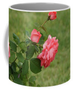 Pink And White Blended Stem Coffee Mug