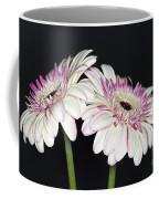 Pink And White Gerbera 2 Coffee Mug