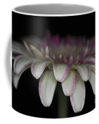 Pink And White Gerbera 3 Coffee Mug