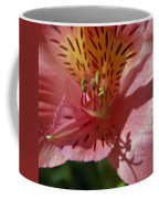 Pink And Yellow Coffee Mug