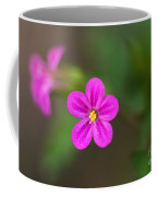 Pink And Yellow Flowers With Green Blurry Background Coffee Mug