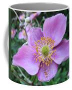 Pink Anemone Flower Coffee Mug