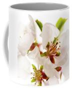 Pink Blossom Coffee Mug by Elena Elisseeva