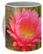 Pink Cactus Flower Of The Southwest Coffee Mug