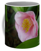 Pink Camellia About To Bloom Coffee Mug