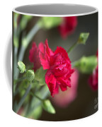 Pink Carnation Coffee Mug