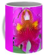 Pink Cattelaya Orchid Coffee Mug