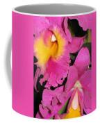 Pink Cattleya Orchid Coffee Mug
