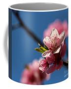 Pink Cherry Tree Blossom Coffee Mug