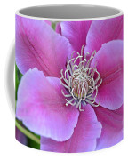 Pink Clematis Beauty Coffee Mug