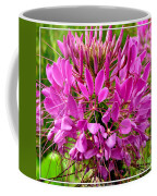 Pink Cleome Flower Coffee Mug