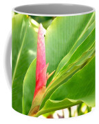 Pink Cone Ginger Bud Coffee Mug