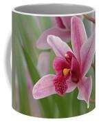 Pink Cymbidium Orchid Coffee Mug
