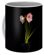 Pink Diamond Amaryllis Coffee Mug by Claudio Bacinello