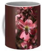 Pink Dogwood At Easter 3 Coffee Mug