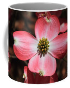 Pink Dogwood At Easter 5 Coffee Mug