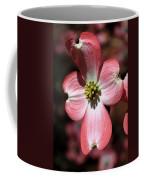 The Cross Of Christ Pink Dogwood At Easter 7 Coffee Mug