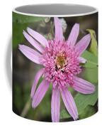 Pink Double Delight Echinacea Coffee Mug